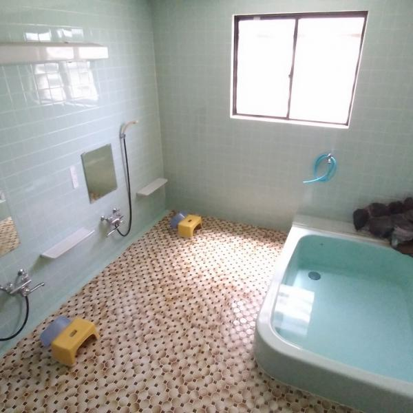 Nozawa Dream Central - bathroom (shared)